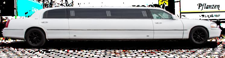 Chrysler  Stretchlimousine in weiß
